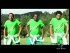 The BEST New Ethiopian Music 2013 Asnake Cheru - Gojam Gojam Belu