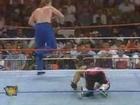 WWE Bret